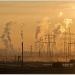 China prepares to open national carbon market